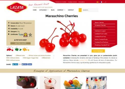 Estrategia digital Lazaya página de producto